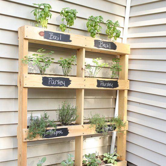 Build your own pallet to create the perfect herb garden.