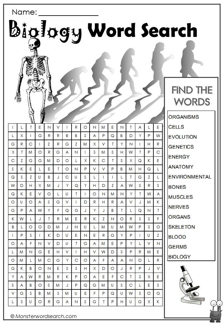 Attractive Anatomy Of Words Collection - Anatomy Ideas - yunoki.info