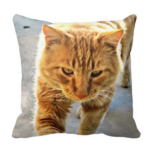 A Cat Named Rudy Pillow