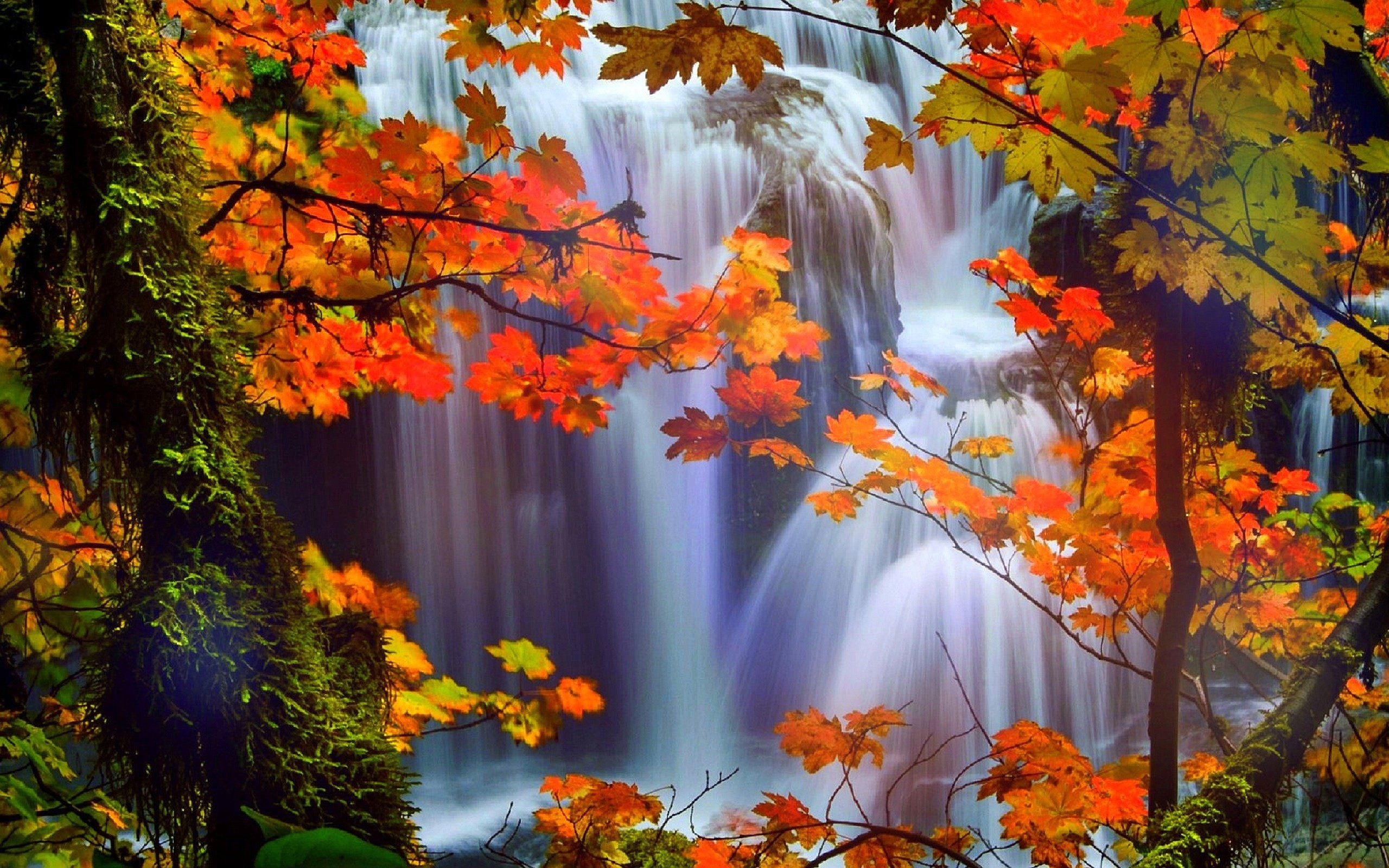 Image for Beautiful Waterfalls With Flowers Wallpaper