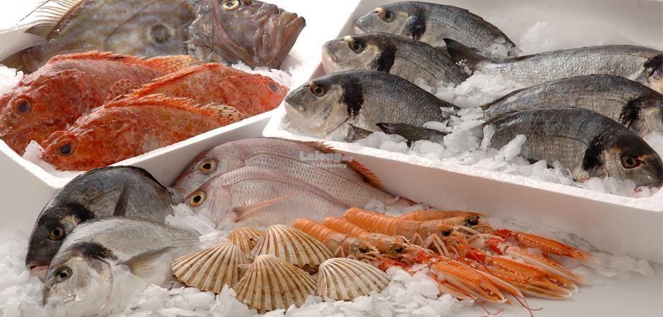 تفسير رؤية السمك في المنام Check More At Https Www Mogtm3k Com D8 Aa D9 81 D8 B3 D9 8a D Frozen Seafood Easy Seafood Recipes Seafood Chowder Recipe Crockpot