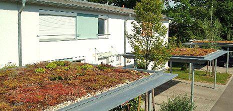 Ein Leichter Grundach Aufbau Eignet Sich Auch Fur Garage Und Carport Grundach Aufbau Dach Grun