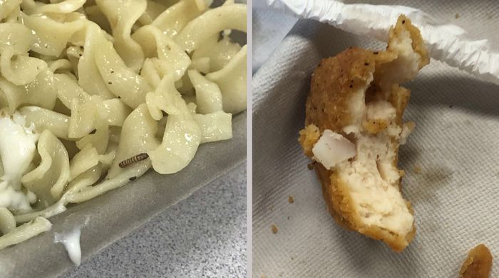 Plastic Chunk Apparent Maggot Found In N J School S Lunches On Back To Back Days Parent Says Back Day School S Lunch