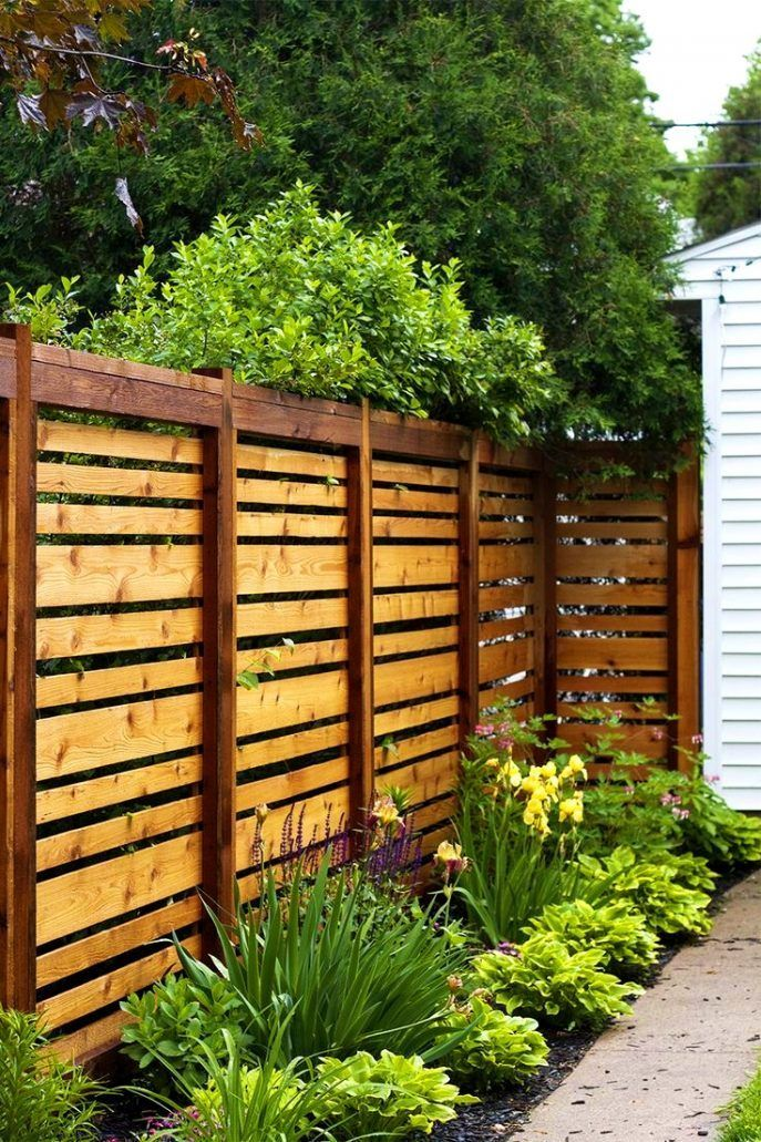 Cheap Fence Ideas To Embellish Your Garden And Your Home Backyard Fences Backyard Privacy Privacy Fence Designs