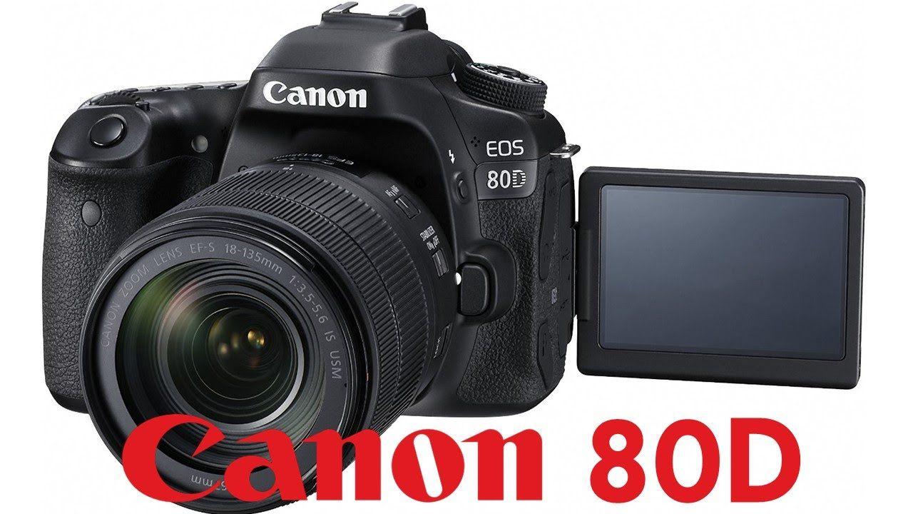 Canon 80D Overview Tutorial | Fotografía:Cámaras y cursos ...