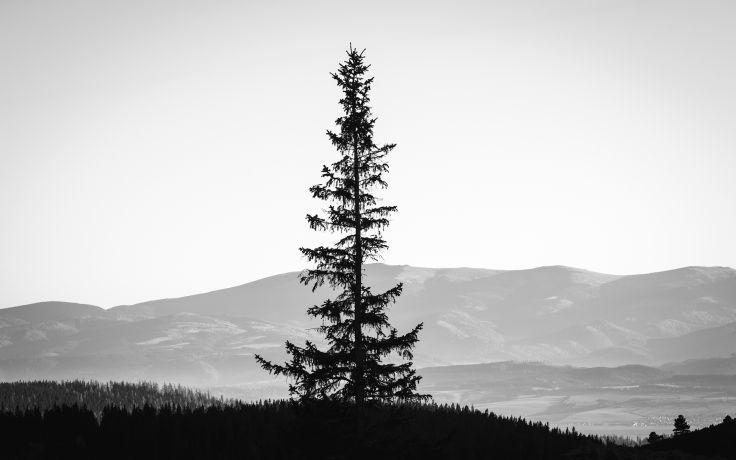 Monochrome Black White Landscapes Mountains Sky Silhouette Wallpaper Background Black And White Landscape Cool Paintings Landscape