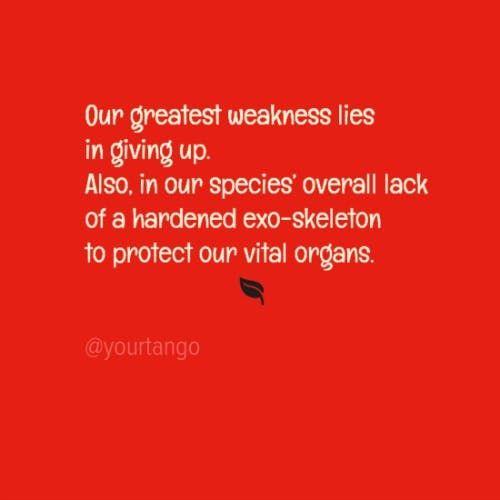27 PassiveAggressive Quotes That Are Actually Pretty