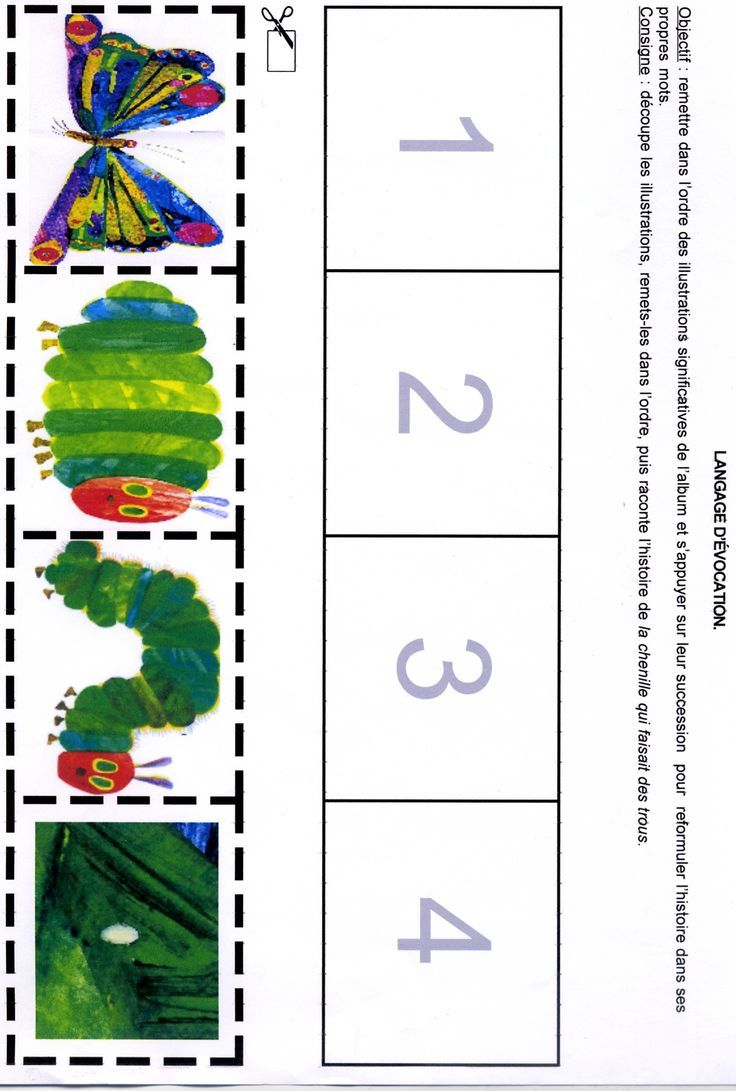 The Very Hungry Caterpillar Stages Of Life Hands On Activity Pinpoint Hungry Caterpillar Activities Hungry Caterpillar The Very Hungry Caterpillar Activities [ 1091 x 736 Pixel ]