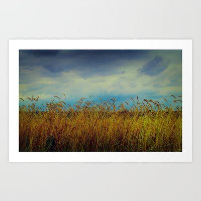 Summer Field Art Print by Tanja Riedel - $15.00