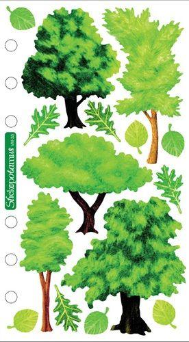 Vellum Trees Scrapbooking Stickers Trees Pinecones Pinterest