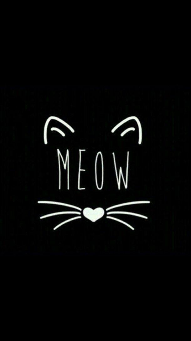 Papeis De Parede De Gatinhos Fofos Para Whatsapp E Celular Cats