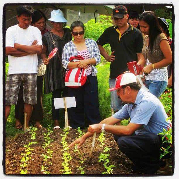 5d9e1de8c752da6ad86210f1999bc0b8 - Bio Intensive Gardening In The Philippines