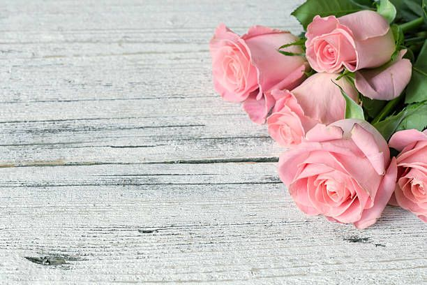 Pink Roses On White Wooden Background Picture Id509687068 612 408 Pink Background Images Flower Backgrounds Floral Wallpaper