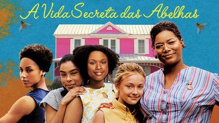 Confira A Vida Secreta Das Abelhas Na Netflix A Vida Secreta