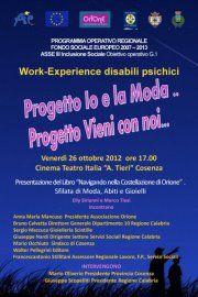 work experience disabili