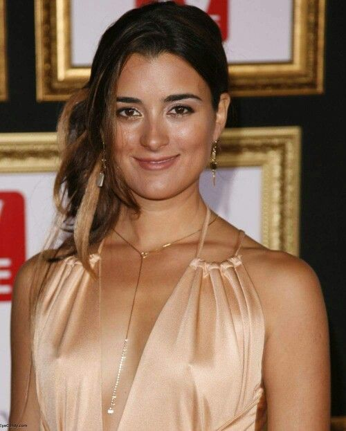 Pin By Charles Holloway On Cote De Pablo  Ziva David, Cote De Pablo, Ncis-3984
