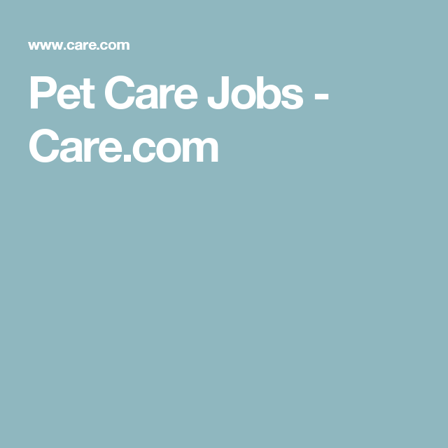 Pet Care Jobs Pet Care Jobs Care Jobs Pet Care