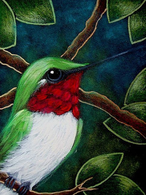 TINY RUBY HUMMINGBIRD IN MY GARDEN | Bird drawings ...
