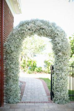 Baby S Breath Backdrop Google Search Wedding Arch Babys Breath Wedding Gypsophila Wedding