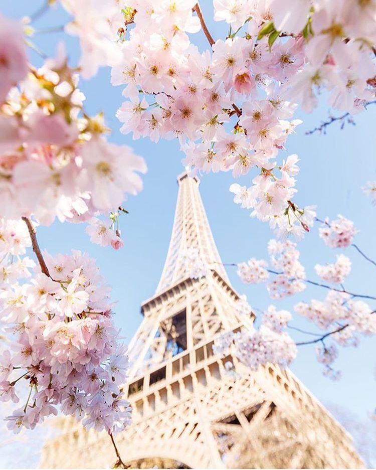 Torre Eiffel La Guida Ai Biglietti Prezzi Orari E