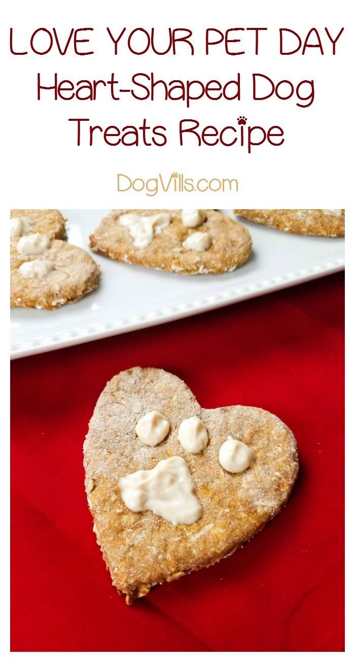 Celebrate Love Your Pet Day With Yummy Heart Shaped Dog Treats