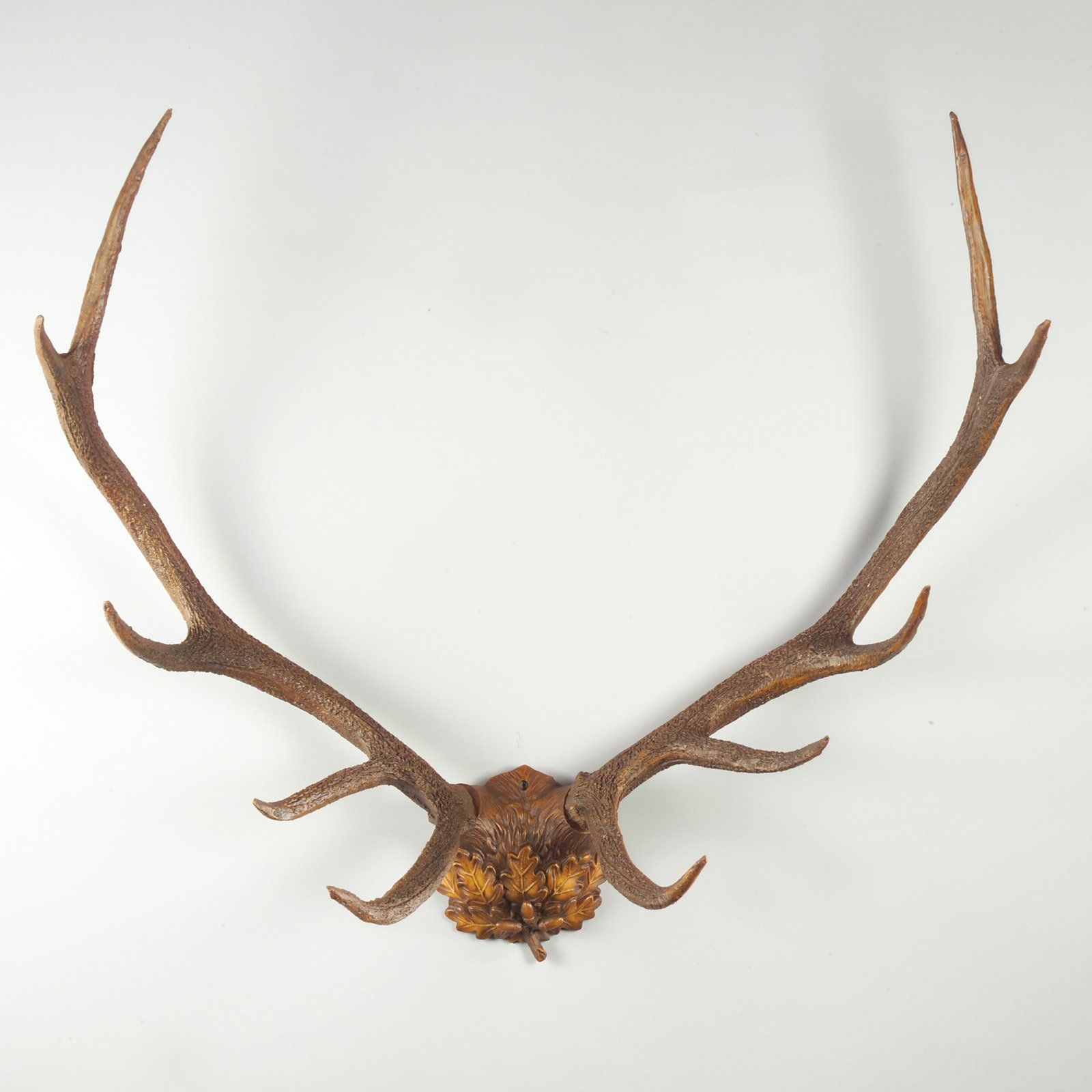 $309 Oklahoma Casting Oak Leaf Antlers Wall Art   Mount A Ten Point Buck  Without Your Taxidermist   The Oklahoma Casting Oak Leaf Antlers Wall Art  Is A ...
