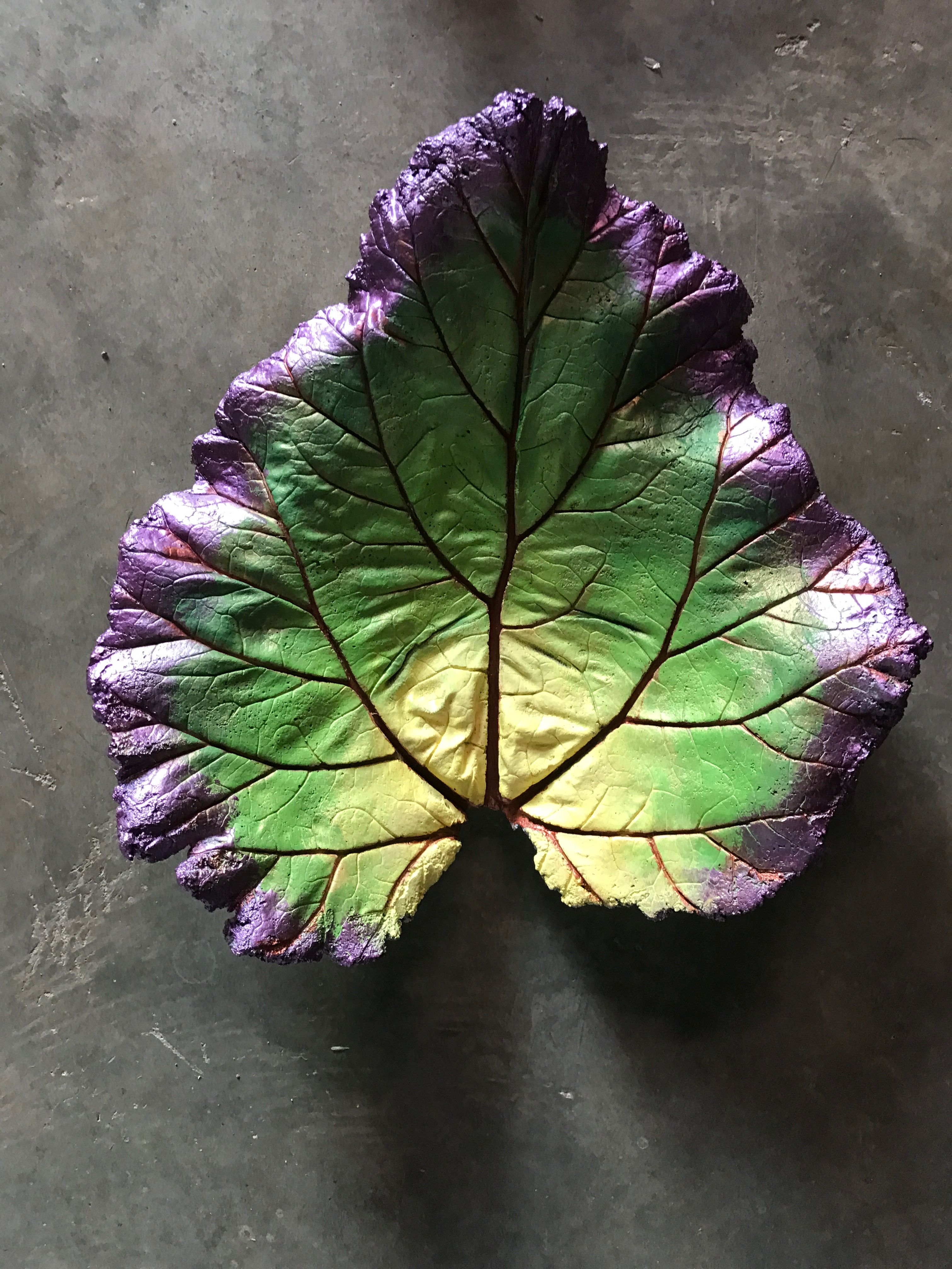 Idea For My Leaf Casting Concrete Leaves Cement Leaves Cement Leaf Casting