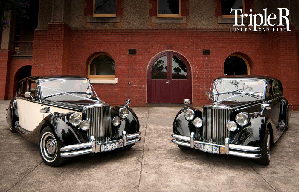 Www Tripler Com Au The Always Popular Jaguar Mk5 Sedans Available In Both Two Tone Or Black Make Your Wedding A Luxury Car Hire Wedding Car Wedding Classic