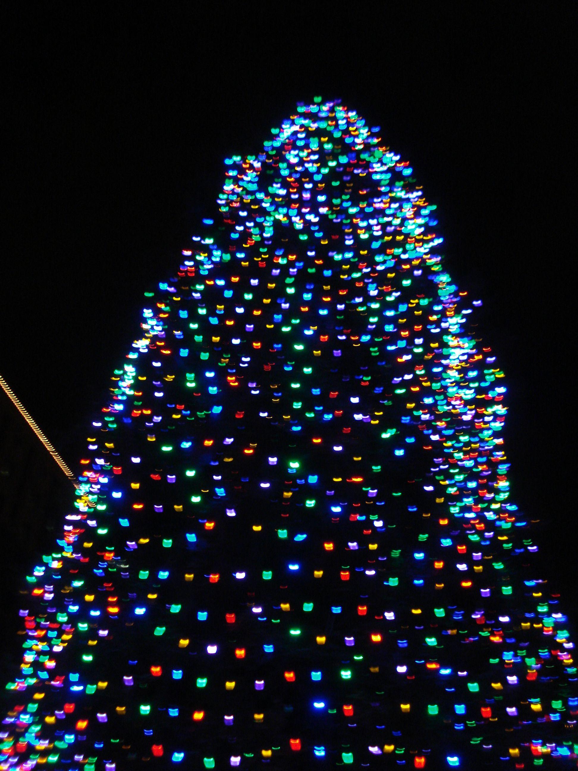 Led Weihnachtsbeleuchtung Baum.Miniatur Led Weihnachtsbeleuchtung Außen Weihnachten Rentier