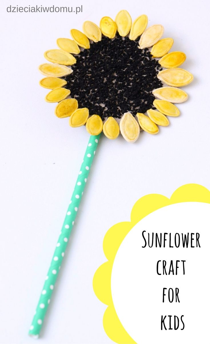 Slonecznik Praca Techniczna Dla Dzieci Sunflower Crafts Crafts For Kids Seed Craft