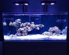Mars Aqua 300 watt LED modification | Saltwater aquarium ...