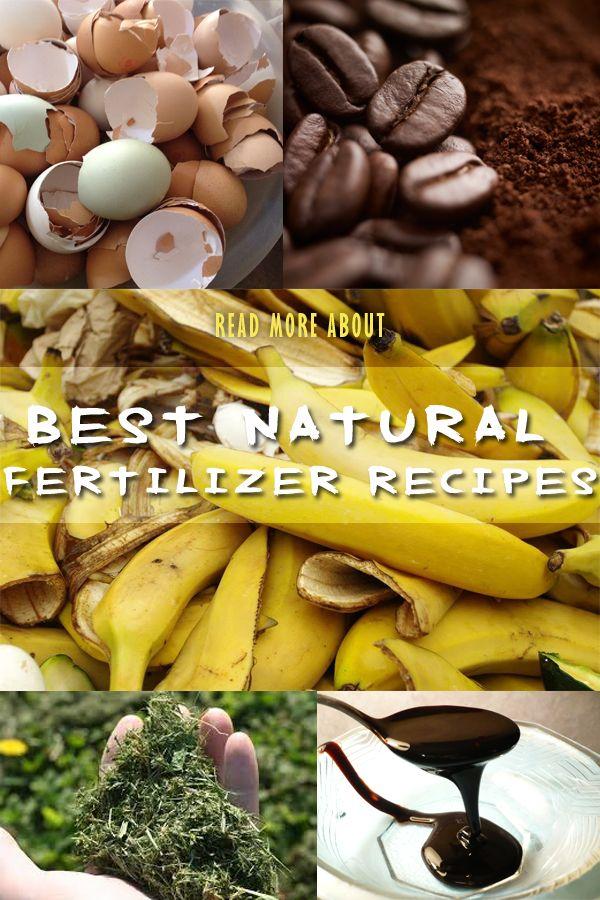 Best Natural Fertilizer Recipes Naturalgardenideas Com With