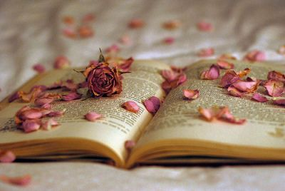 Like an open Book..