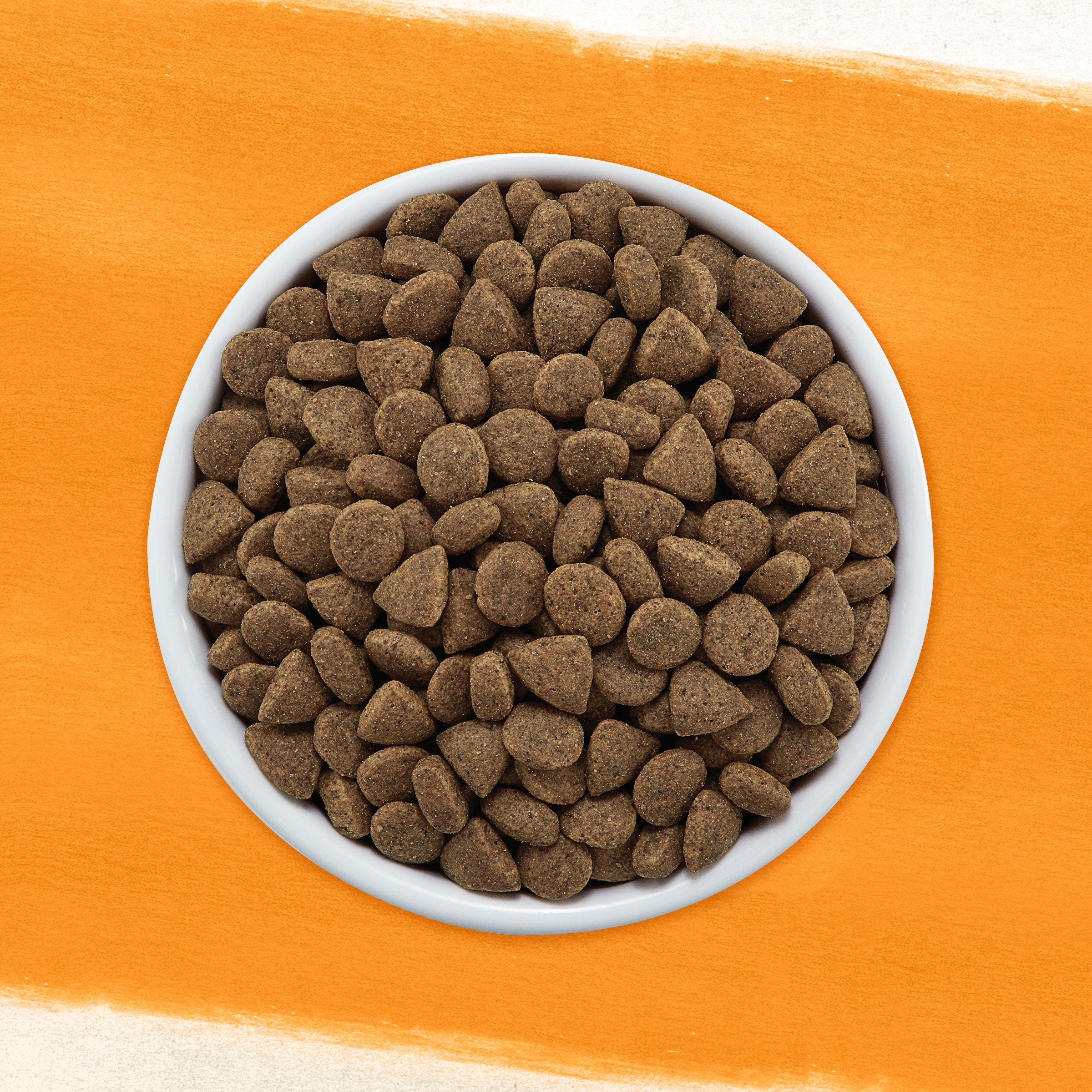Purina Beyond Grain Free White Meat Chicken And Egg Recipe Adult