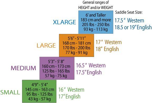 English saddle size chart google search also best horse training images on pinterest rh