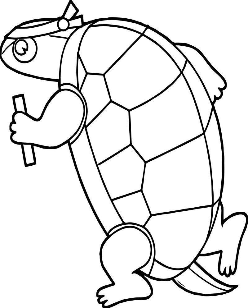 Sport Tortoise Joggin Turtle Coloring Page (Dengan gambar)