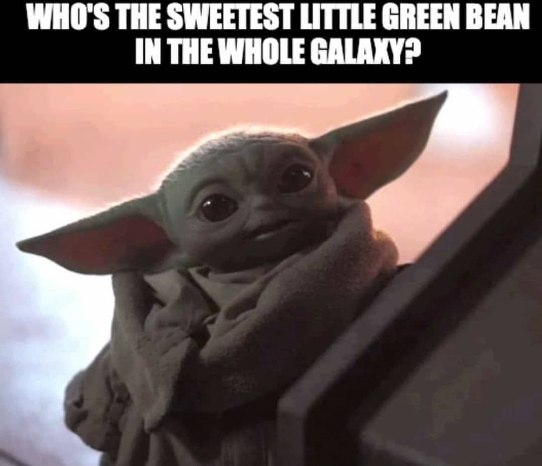 1 726 Likes 23 Comments The Real Baby Yoda Babyyoda Ig On Instagram Follow Babyyodda Yoda Funny Yoda Pictures Yoda Meme