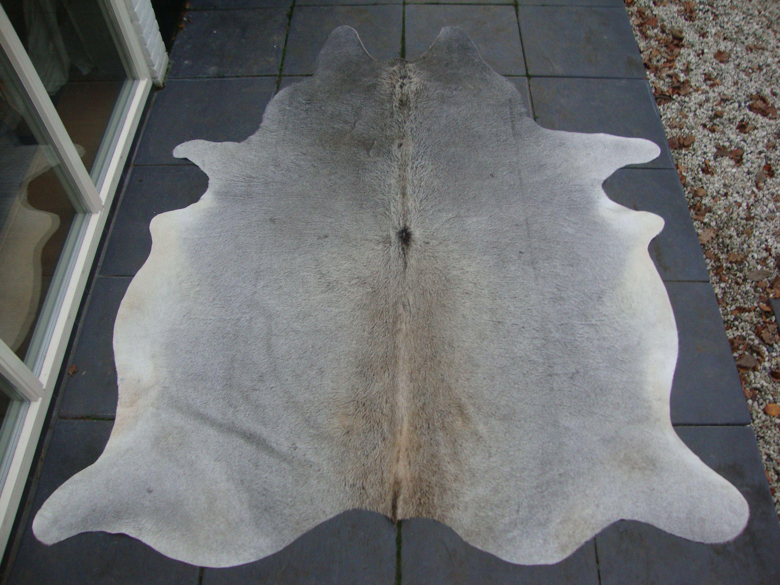 Grijze koeienhuid huiden & vachten pinterest exterior design
