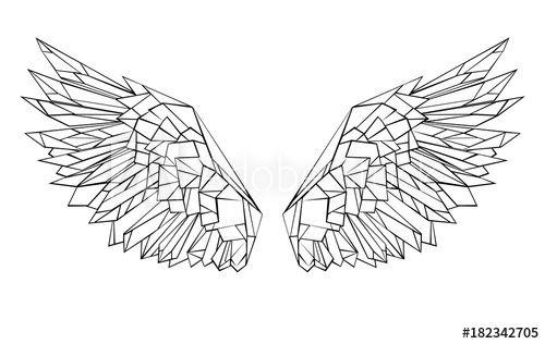 Photo of Polygonal wings