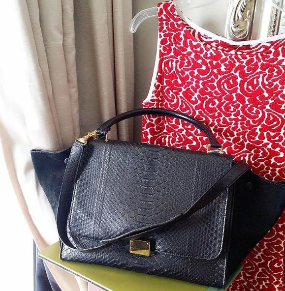 Home Celine Trapeze Bag Bags Celine Bag