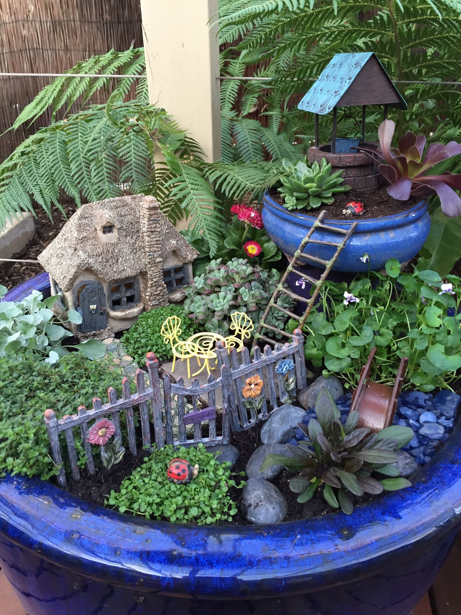 Fairy Garden! | Jardines | Pinterest | Fairy, Gardens and Garden ideas