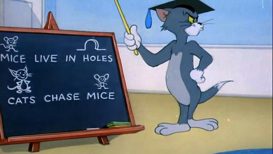 Cinque simpatici gatti dei cartoni animati la strana logica dei