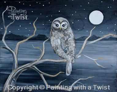 Midnight Owl Pittsburgh Pa West Painting Class Painting With