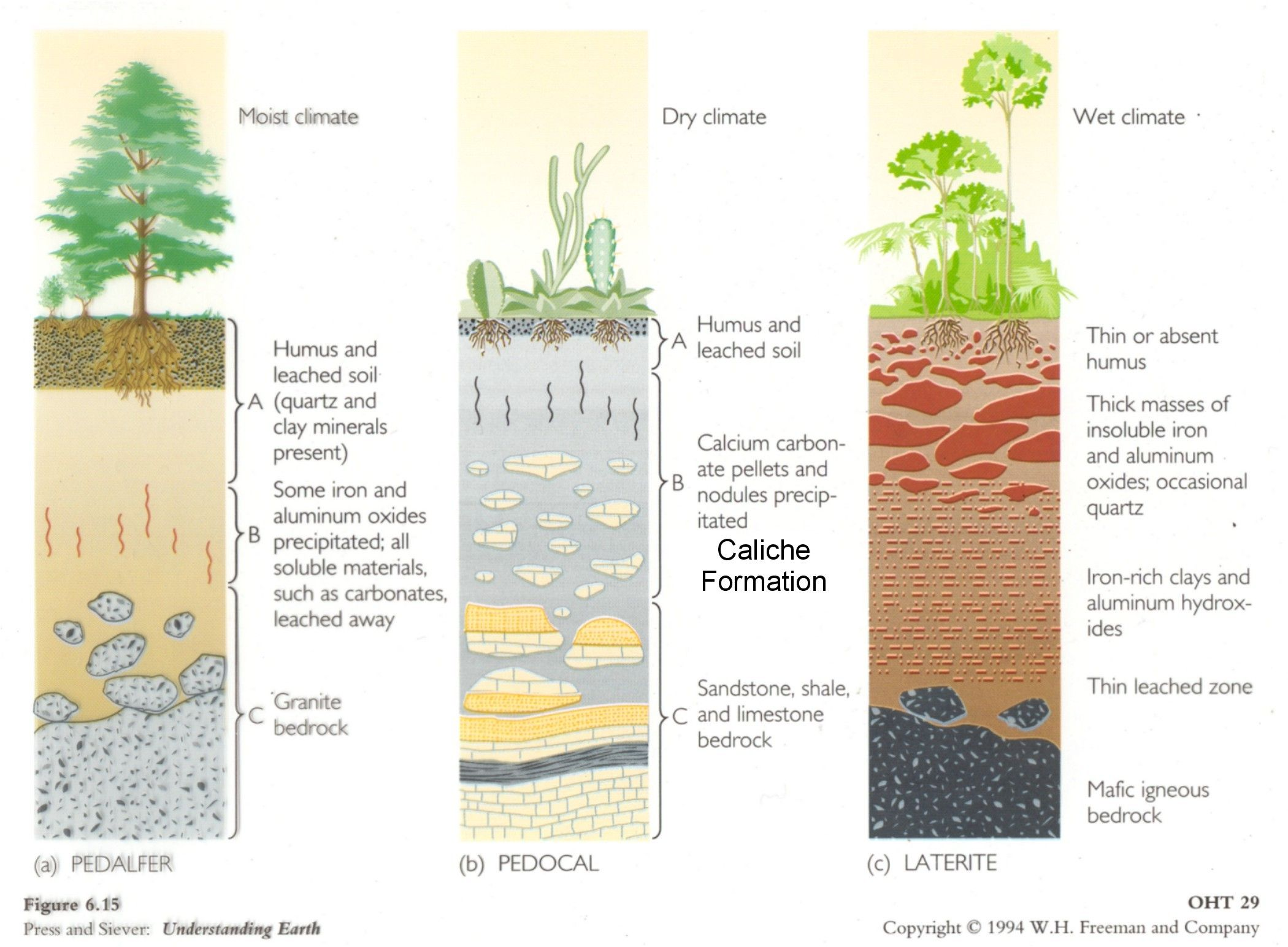 Web Page For Terry J Boroughs Types Of Soil Soil Landscape Diagram