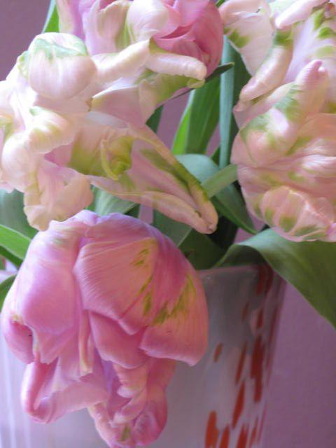 Floristik im MachWerk