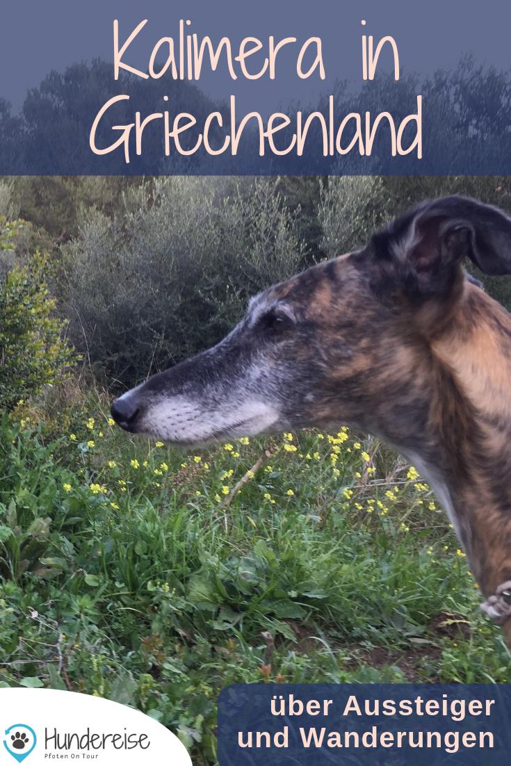 Urlaub Mit Hund In Griechenland Wandern Hundereise Urlaub Mit Hund Griechenland Wanderung