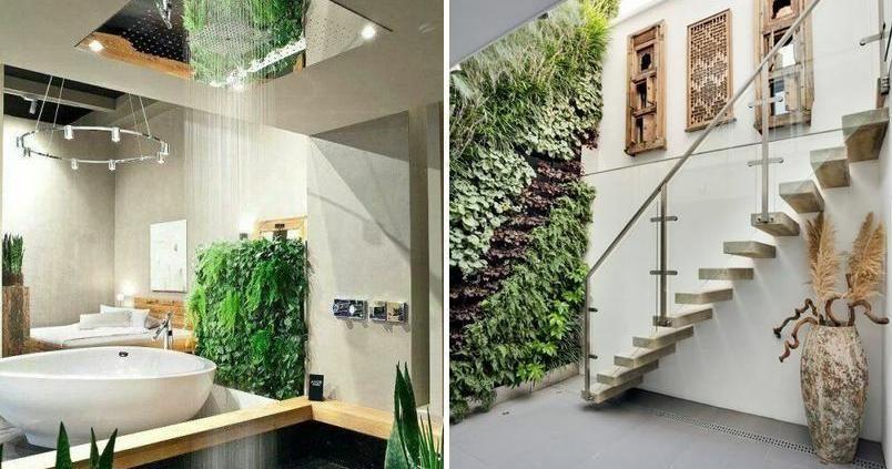 Con dudas sobre la belleza de los jardines verticales de interior