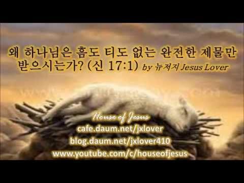 [신명기] 왜 하나님은 흠도 티도 없는 완전한 제물만 받으시는가? (신 17:1) by 뉴저지 Jesus Lover