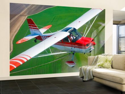 Interior design Champion Aircraft Citabria military wall mural