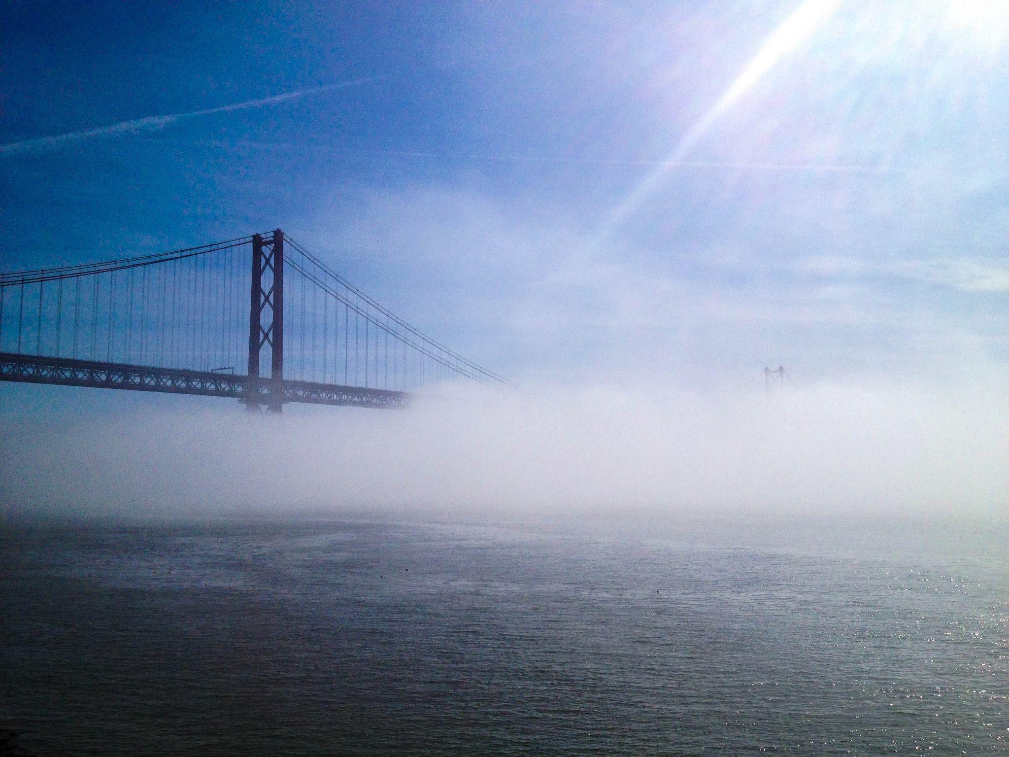 Lisboa 15 de Fevereiro de 2013